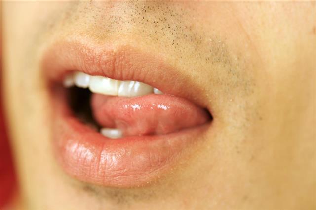 Human Mouth???
