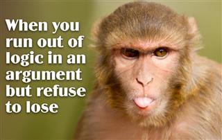 Little monkey pulling the tongue