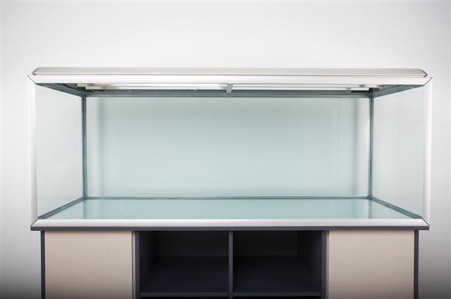 Aquarium in home