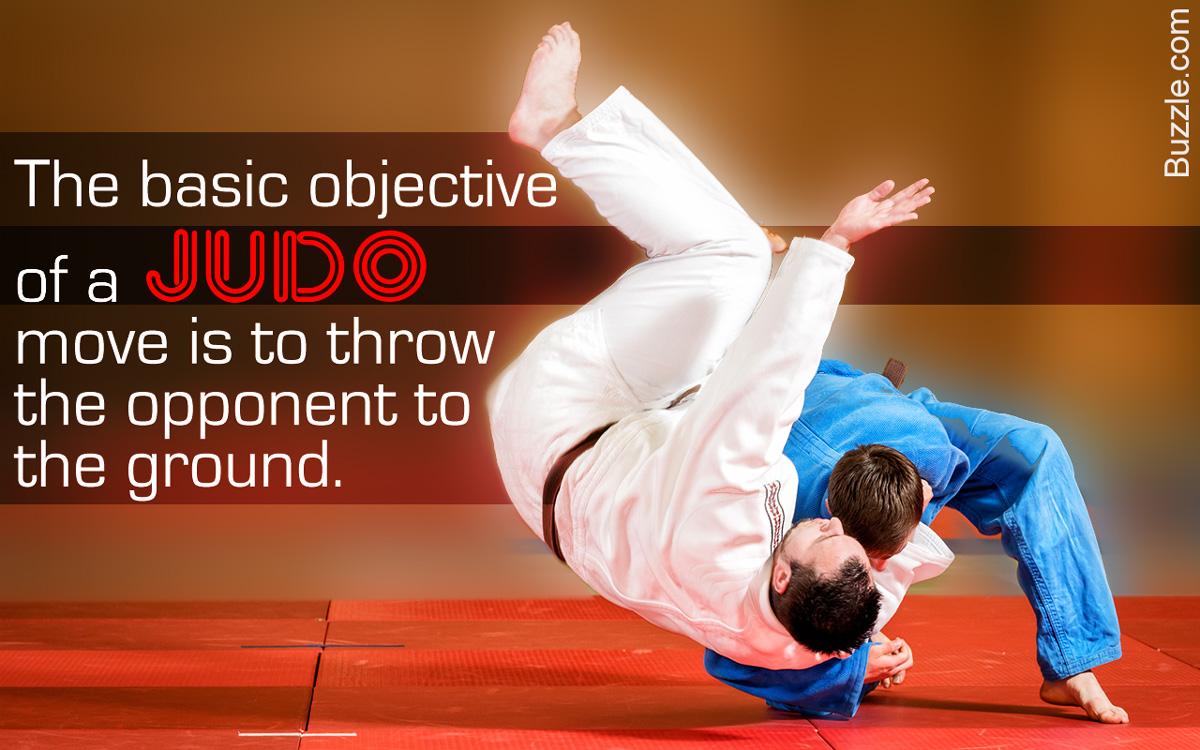 Judo Moves