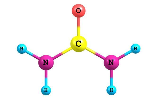 Urea molecule