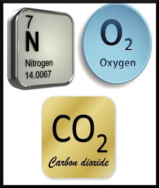 Oxygen, Carbon dioxide and Nitrogen