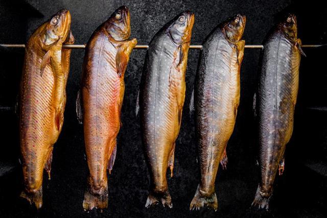 Smoked fish