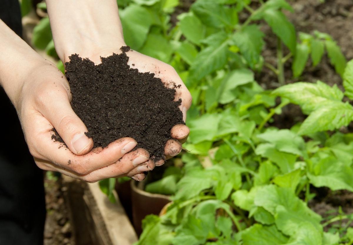 International Pesticide Product Registration