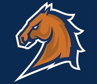 Bronco mascot