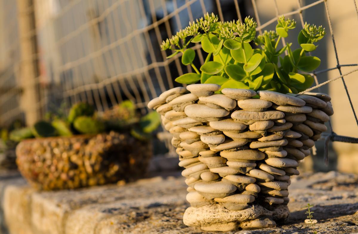 Tips for taking excellent care of kalanchoe plants for Como decorar un jardin con macetas