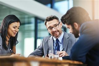 Leadership as Delegative