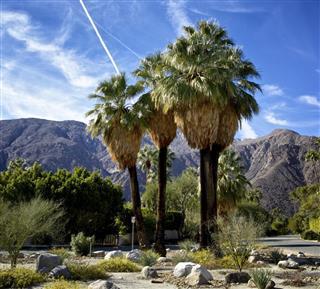 Palm Springs Streetscape, Southern California, USA