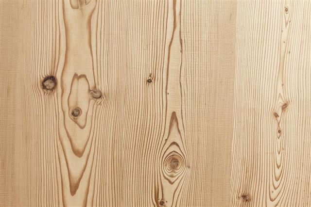 White Pine Wood