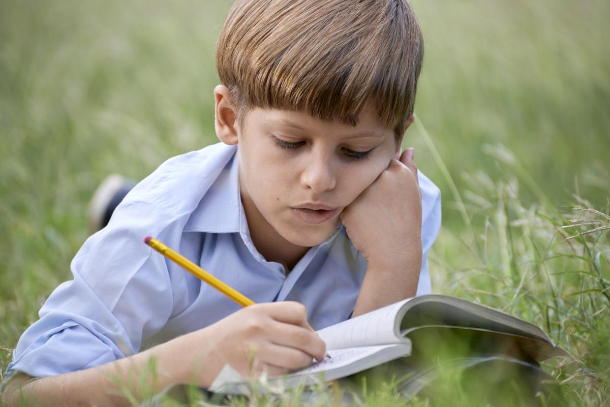 Writer helper for college homework