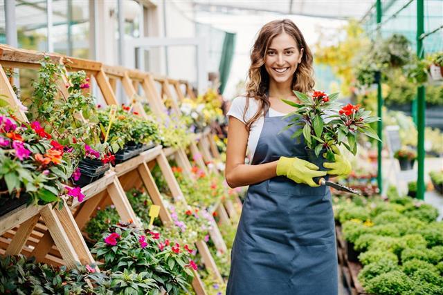 Smiling young gardener