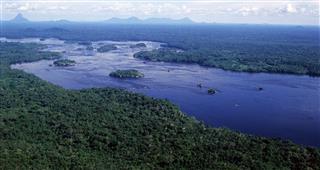Tropical rainforest climate