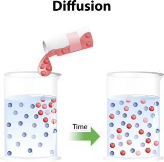 Diffusion activity