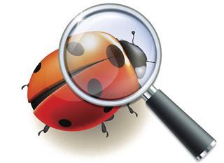 Forensic Entomology