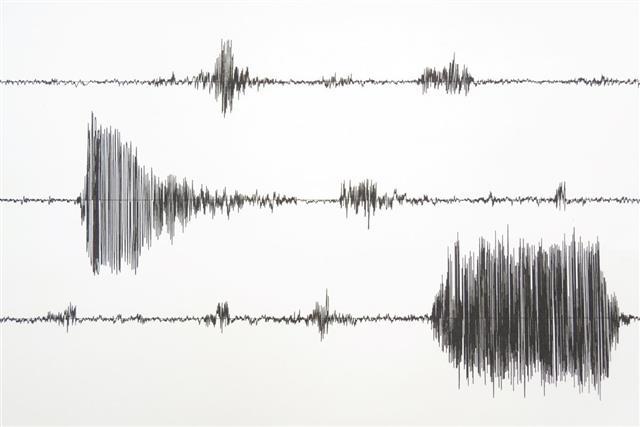Forensic Seismology