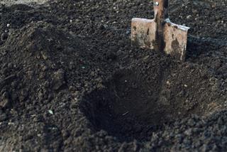 Gardening shovel