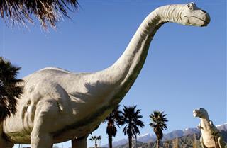 Dinosaur in Triassic Period