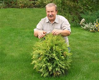 Happy man in a garden
