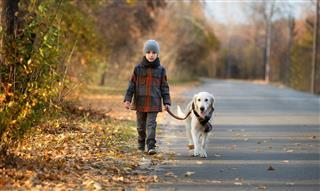 Autumn walk with pet