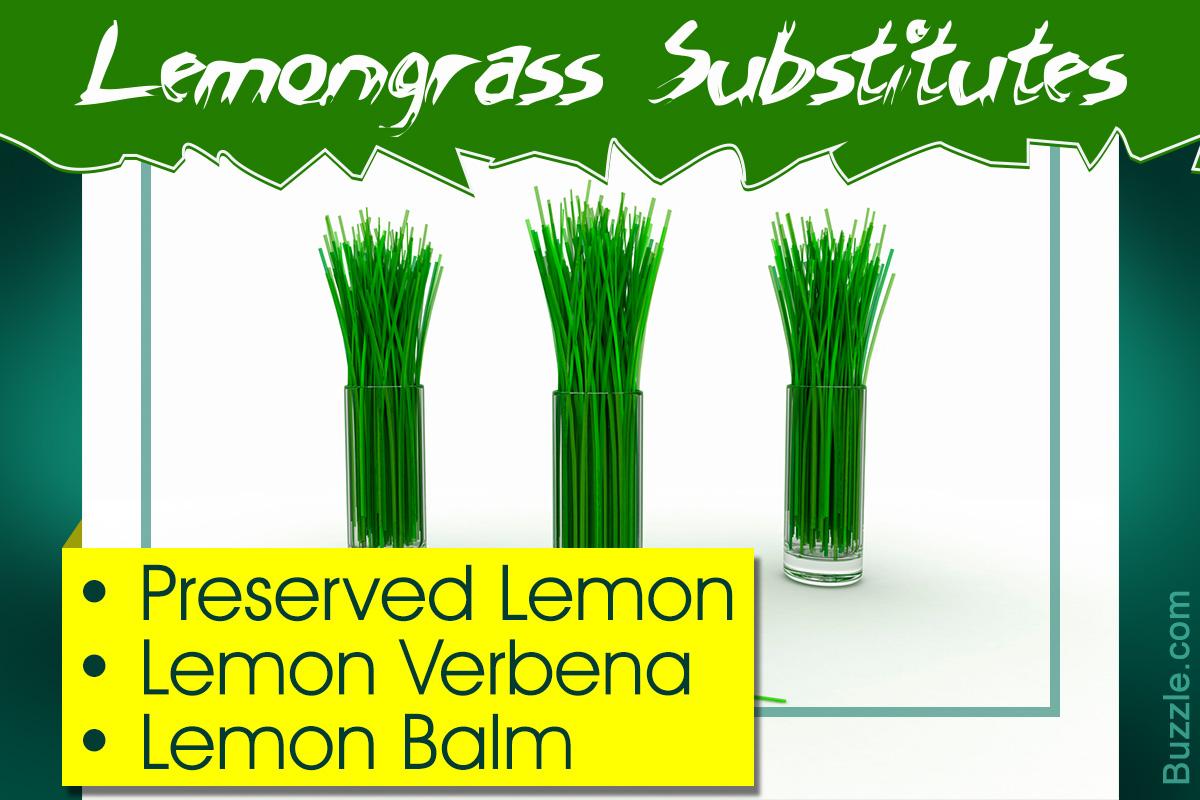 Lemongrass Substitutes