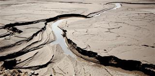 Environmental Soil Pollution