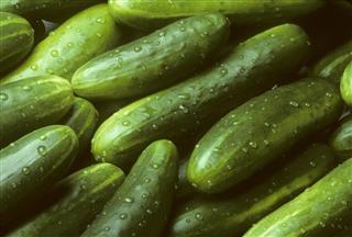 Pile of fresh cucumbers lying diagonally