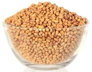 Closeup Of Moth Beans