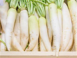 White radishes on wooden planks
