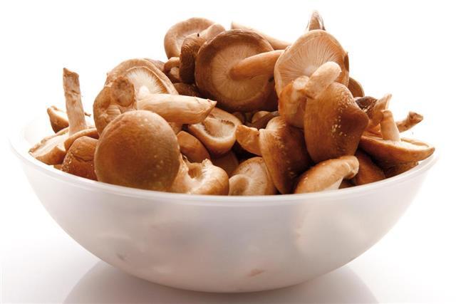 Shiitake mushrooms in bowl