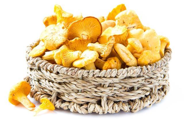 chanterelles mushrooms in basket