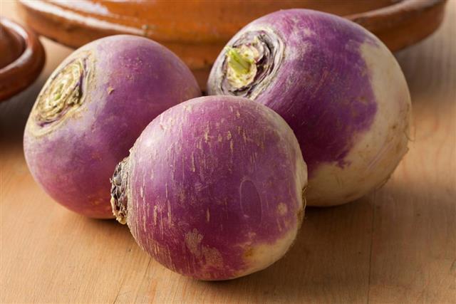 Fresh white turnips