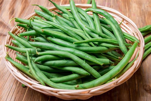 Fresh string beans green beans