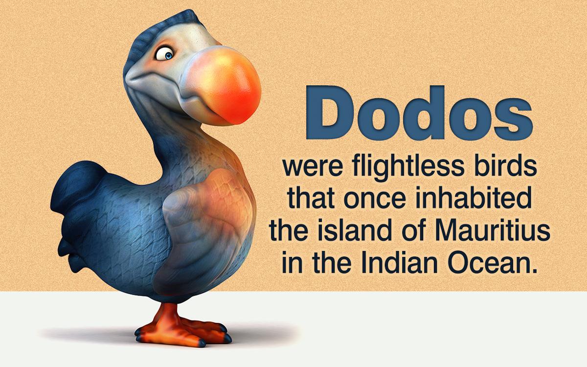 Dodo Habitat