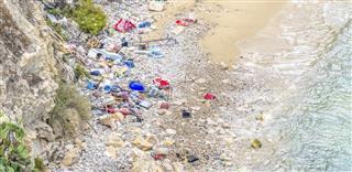 dangerous plastics in environment