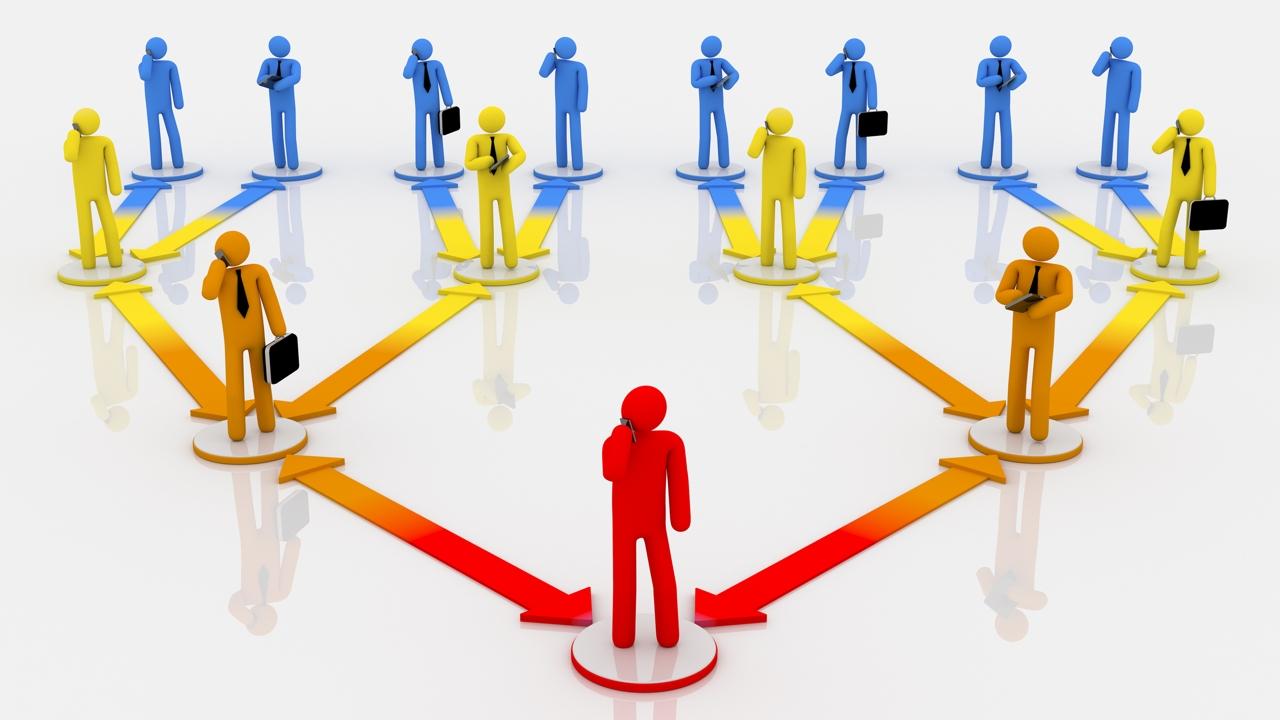 Hybrid Organizational Structure