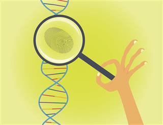 DNA fingerprinting and testing conceptual illustration