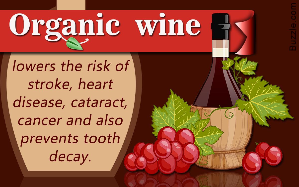 Making Organic Wine at Home