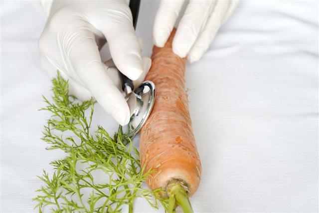 Scientist examining food