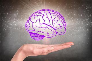 Amazing brain