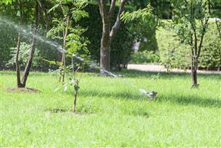 Garden lawn water sprinkler system