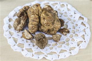 White Truffles Or Alba Madonna