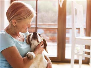 Senior woman petting her hound dog