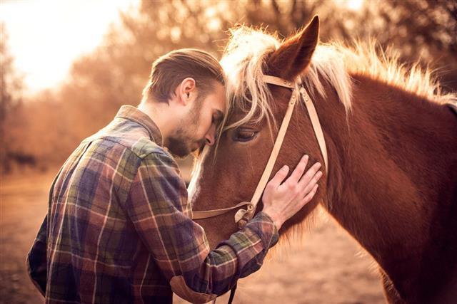 Young man hugs a horse