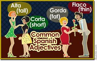 common Spanish adjectives