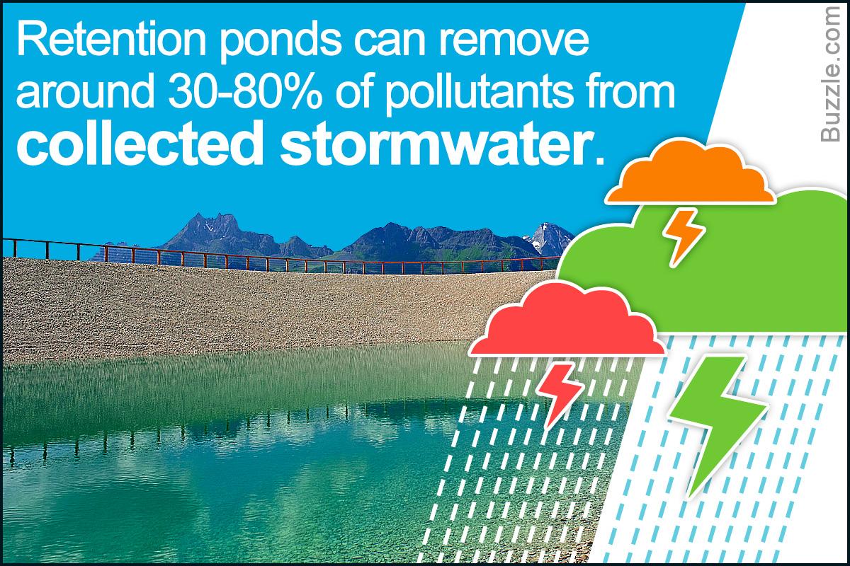 关于保留池,您需要了解的事情