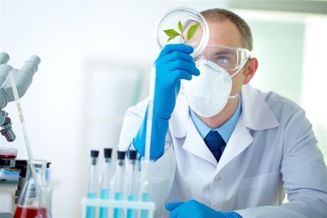 Biochemist at work