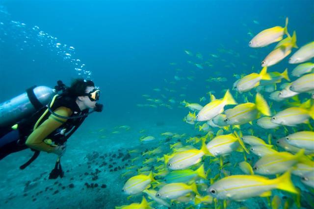Scuba Diving pressure