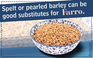 Substitutes for Farro