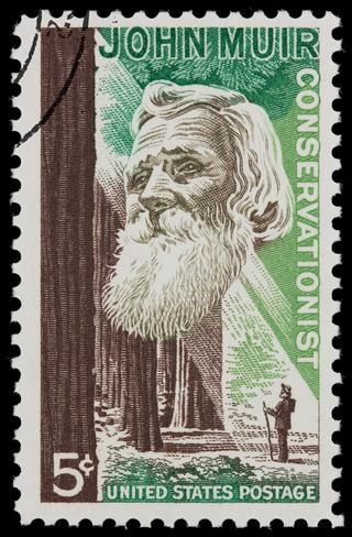 John Muir Conservationist Postage Stamp