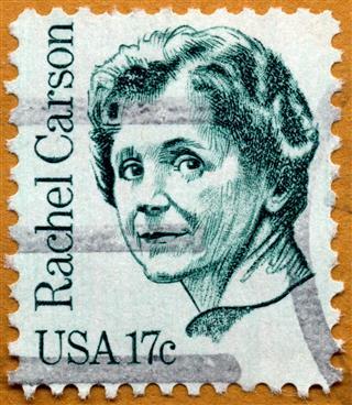 Environmentalist Rachel Carson Postage Stamp